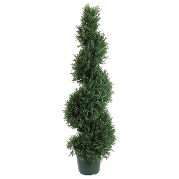 Rosemary Spiral Green Tree 4ft
