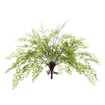 Maidenhair Green Fern 17in