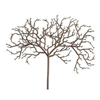 African Twig 18in