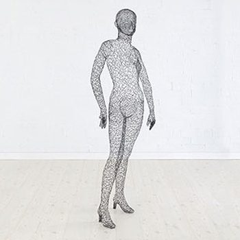 Figure Female/Wire 5.5ft