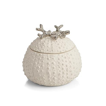 Urchin Candle 4.5in