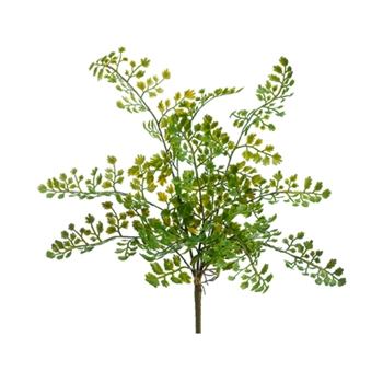 Lace Fern 15in