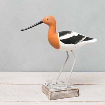 Avocet Summer Straight 9.5in