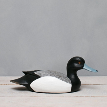 Duck Scaup 13.5W