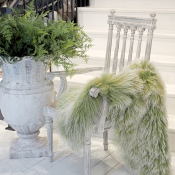 At Chintz & Company, we carry an large selection of throws.  Luxurious faux-fur, BabyMo mohair, wool/silk and in-house custom designed throws.