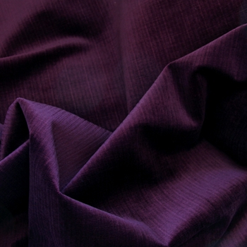 Purple Bristol Velvet Purple