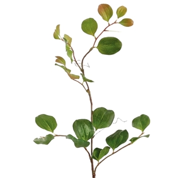 Smilax Dark Green Leaf 40in