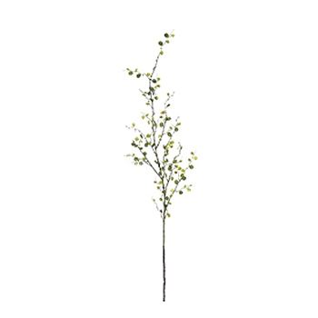 Buttonleaf Green Branch 48in