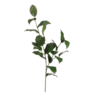 Lemon Leaf Green Branch 36in
