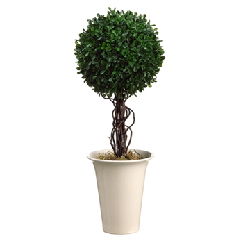 Boxwood Leaf Ball Topiary 18in