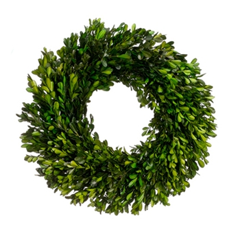 Boxwood Wreath (Preserved) 17in