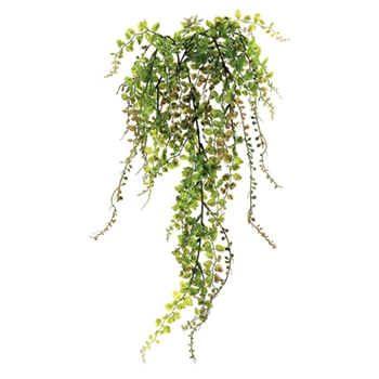 Button Cascade Fern 22in