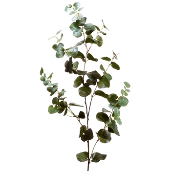 Eucalyptus Leaf 40in
