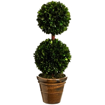 Boxwood Topiary 18in