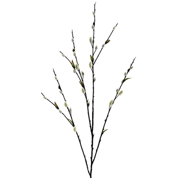 Pussywillow Branch 48in