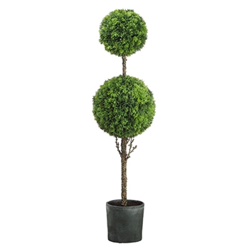 Cedar Ball Topiary 56in