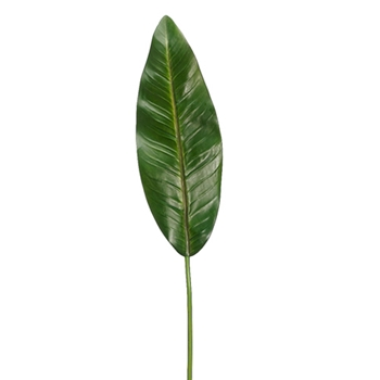Bird of Paradise Leaf 37in
