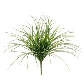 Carex Grass 20in