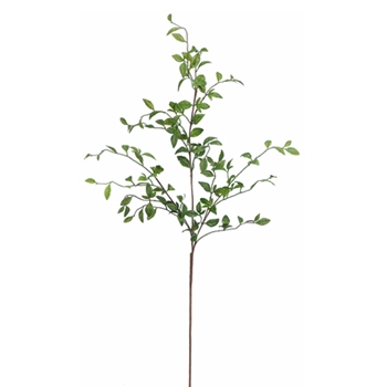 Nandina Leaf 42in