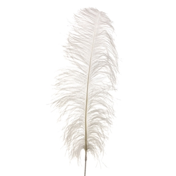 Ostrich Feather 34in