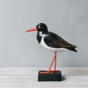 Oyster Catcher 9.5in