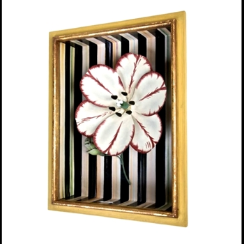 Shadow Box Tulip Red 12W/16H