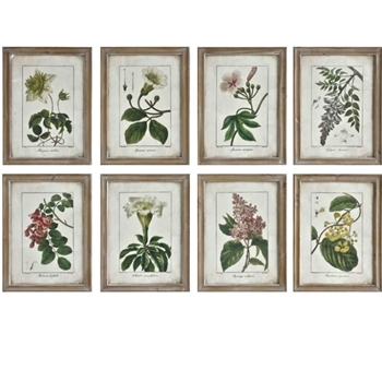 14W/18H Framed Print - Cottage Flowers  AST