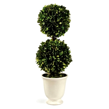 Boxwood Preserved Topiary 2Ball 8W/19H White Ceramic Urn