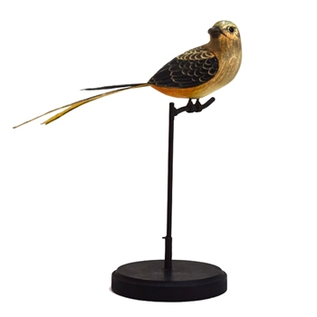 Bird Asian Flycatcher Golden 11in