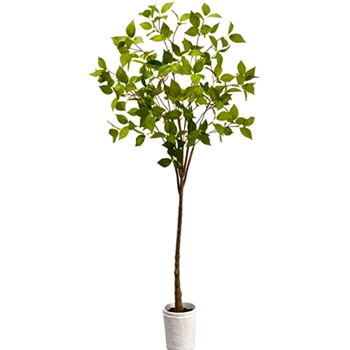 Laurel Topiary 38in White Pot