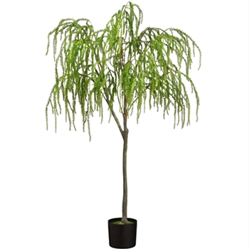 Weeping Juniper Tree 60in Black Pot