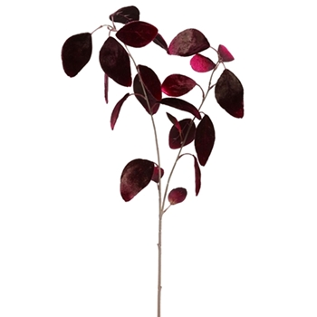 Leaf Eucalyptus Bordeaux Velvet 25in