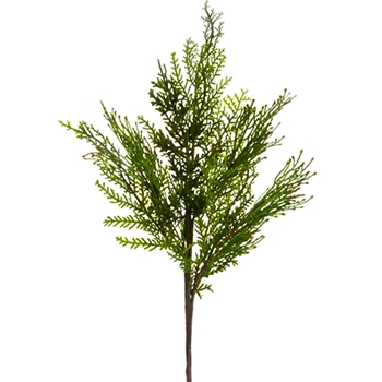 Cedar Juniper Green Pick 17in