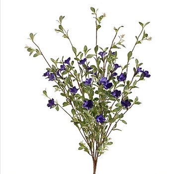 32. Petunia Wild Bush Cobalt 31in