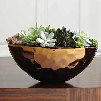 Bowl - Nugget Oval Bronze 16w/12D/7H