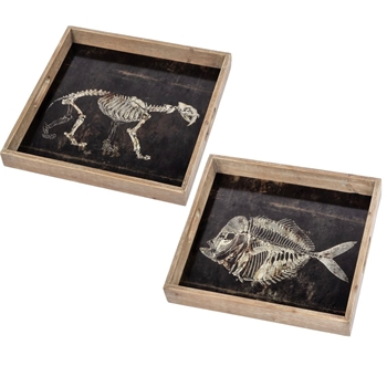 Tray - Fossils Set2 Small 14SQ, Large 16SQ