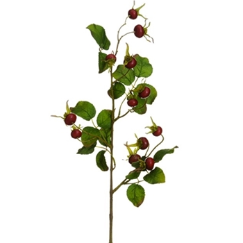 Berry Rose Hip Ruby Leafy 28in