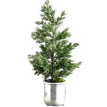 Juniper Tree Tabletop Silver Pot 19in Green