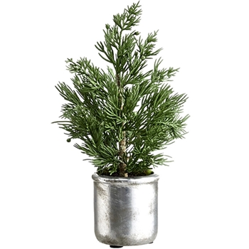 Juniper Tree Tabletop Silver Pot 10in Green