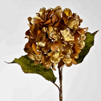 K - Hydrangea Velvet Gold Antique 26in