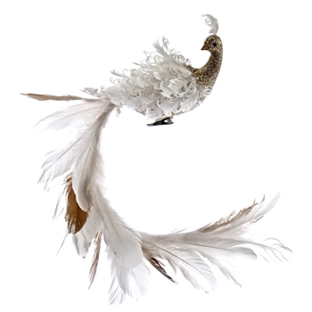 Bird Exotic Tail White 22in