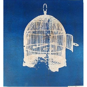 Bird Cage I Blue (36in x 36in)