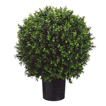 Boxwood Leaf Globe Green Topiary/Potted 26H