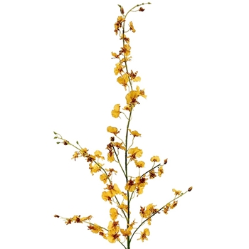 Oncidium Orchid 40in