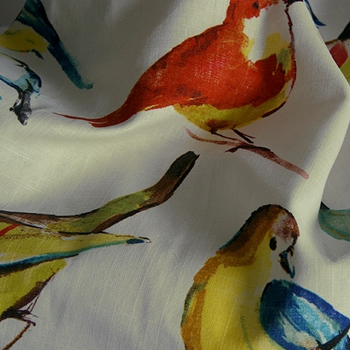43. Verde Print Birdwatcher Summer