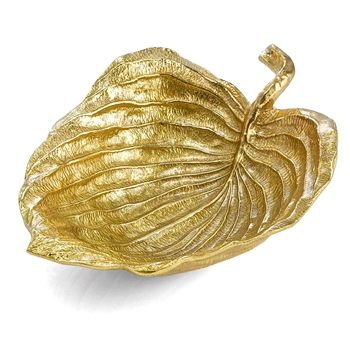 Aram Gold Leaf Hosta 15W/11D/4H