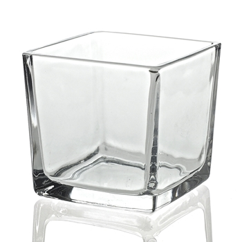 Vase - Glass Cube Clear 3X3in