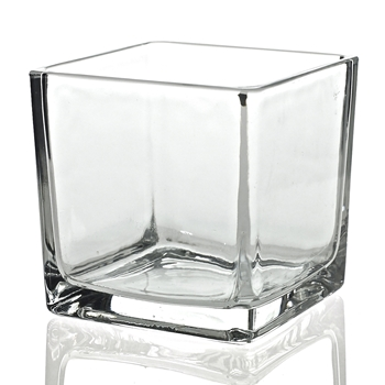 Vase - Glass Cube Clear 4X4in