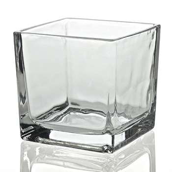 Vase - Glass Cube Clear 5X5in