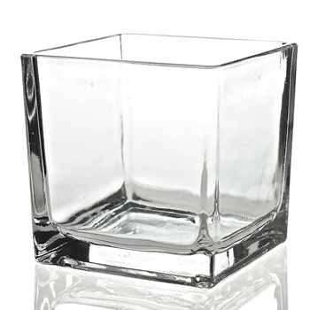 Vase - Glass Cube Clear 6X6in